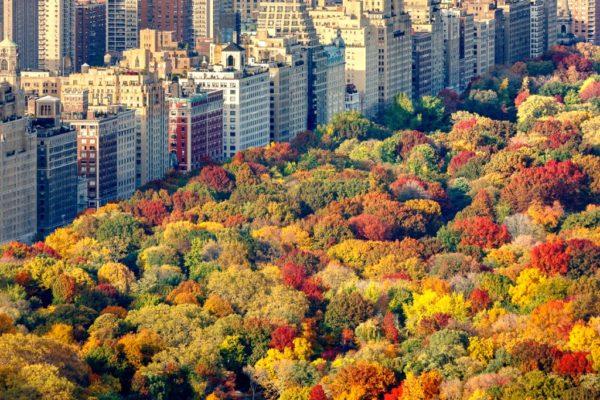 Thanksgiving-family-vacation-rentals-fall-foliage-1024×682
