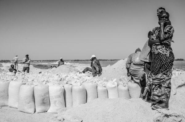 La raccolta del sale nel Lago Rosa